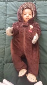 ANAIYA--Monkey